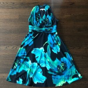 Evan-Picone Dress